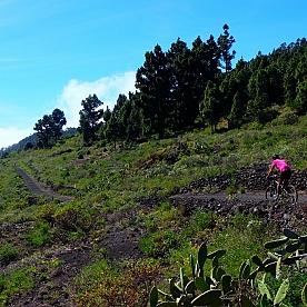 Por Tierra de Volcanes y Vinos (Isla de Palma en Bicicleta)